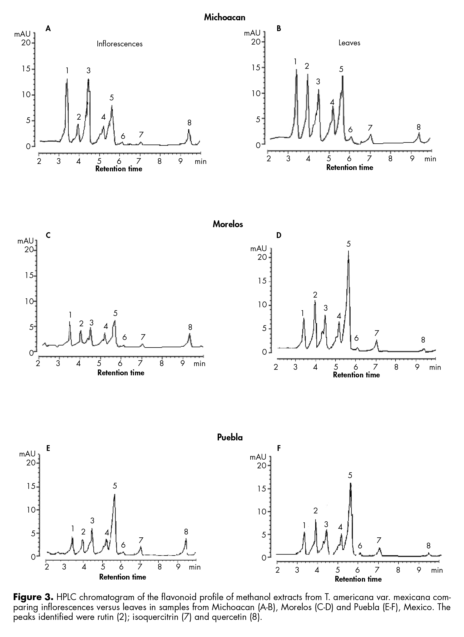HPLC chromatogram of the flavonoid profile of methanol extracts from T. americana var. mexicana comparing inflorescences versus leaves.